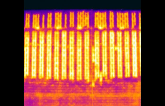 Infrared Block Wall Scan
